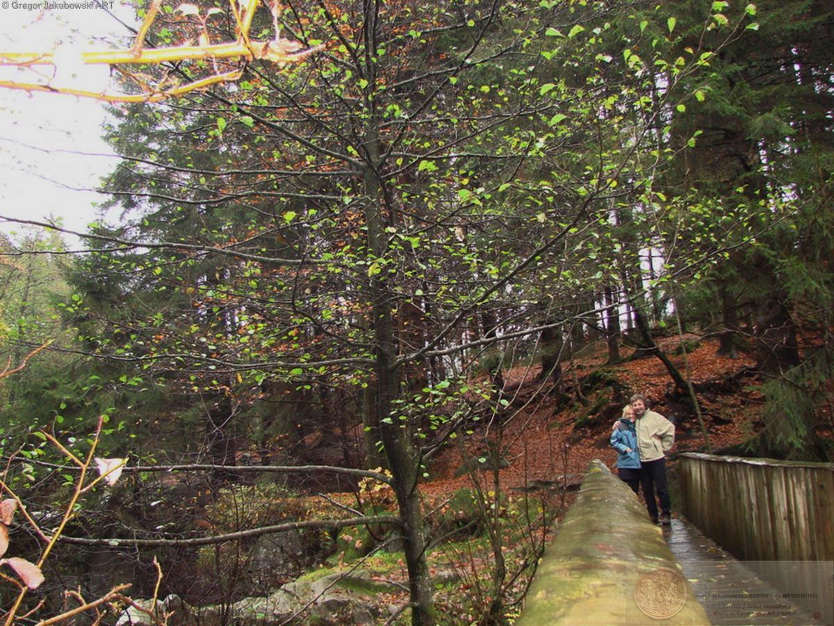 EG_Vosges_pont