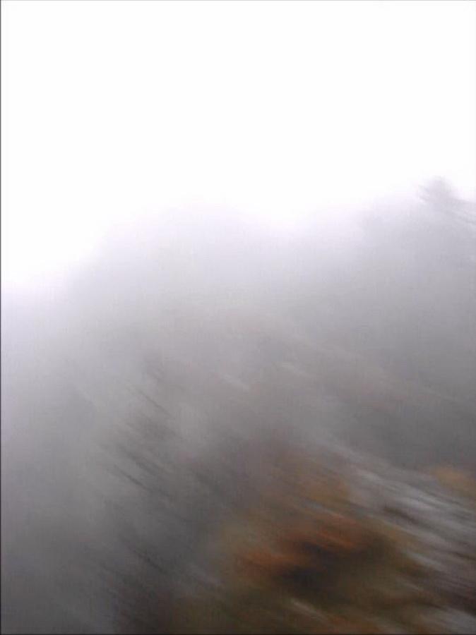 Vosges-mist