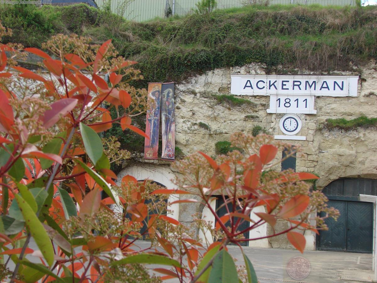 Ackerman_2017_DSC01819