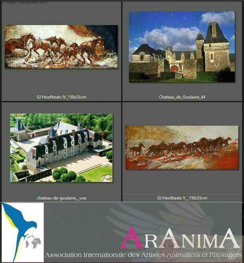Gregor Jakubowski - ArAnima, chateau de GOULAINE, 13-30.VI.2013, Hopital d'Alencon, 3-30 IX 2013,