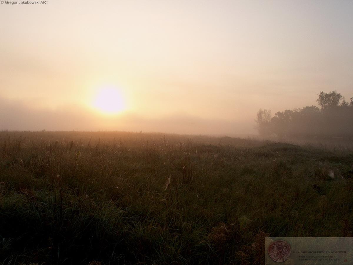 B-L mist