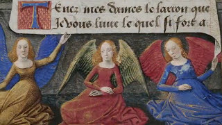 Mortifiement de Vaine Plaisance - Roi Rene d'Anjou - video Gregor Jakubowski